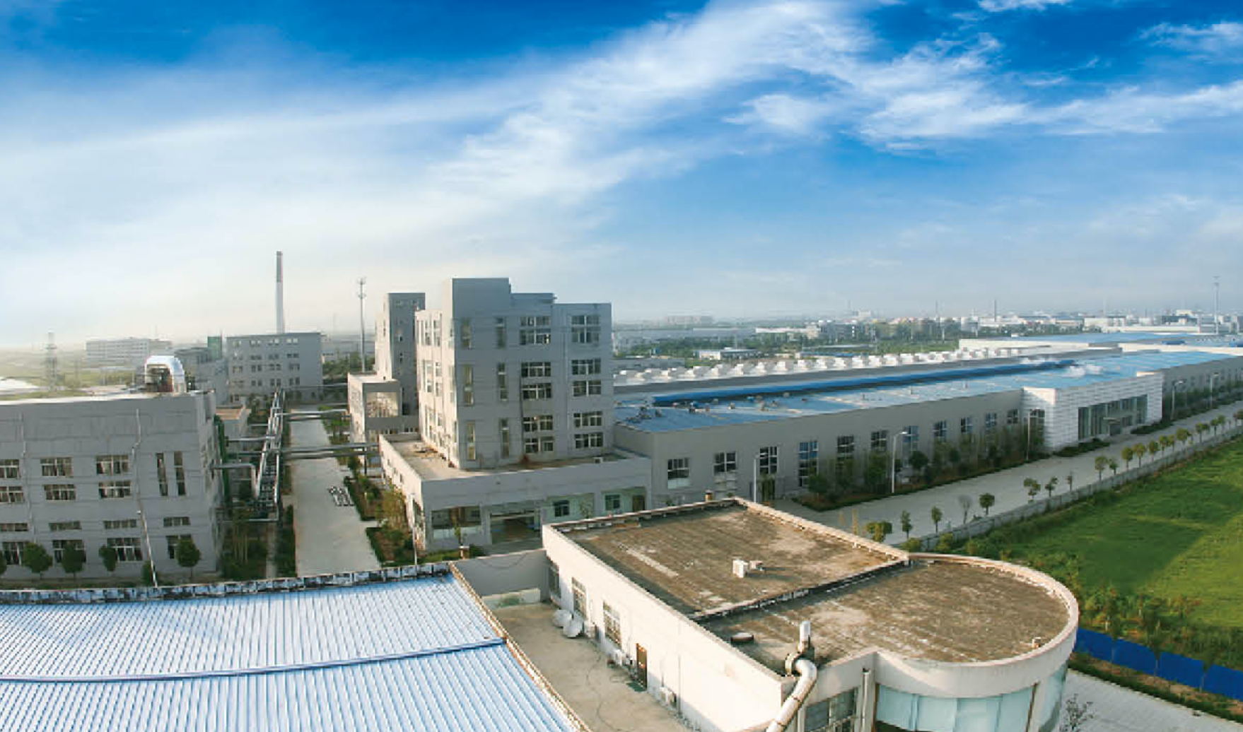 Zhongfu-Shenying Europe - Chinese Plants